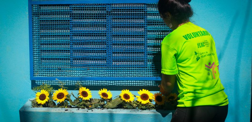 Voluntários realizam mutirão na creche SPES neste sábado