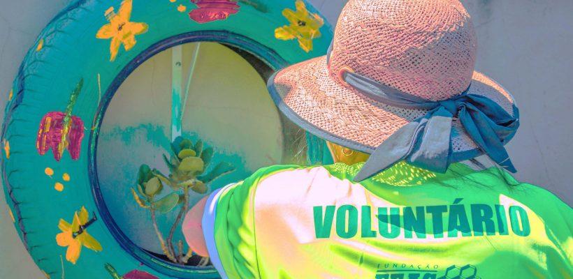 Mutirão voluntário resulta em jardim sensorial em creche